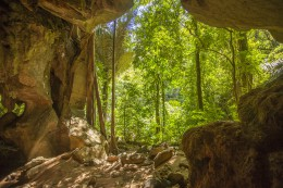Tropic jungle cave in thailand krabi lanta